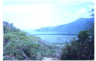panoyap